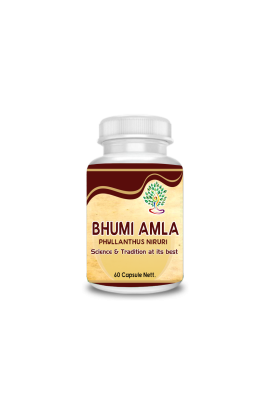 Bhumi Amla (Phyllanthus Emblica)